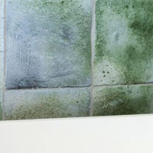 Fusion Glazed Wall Tiles