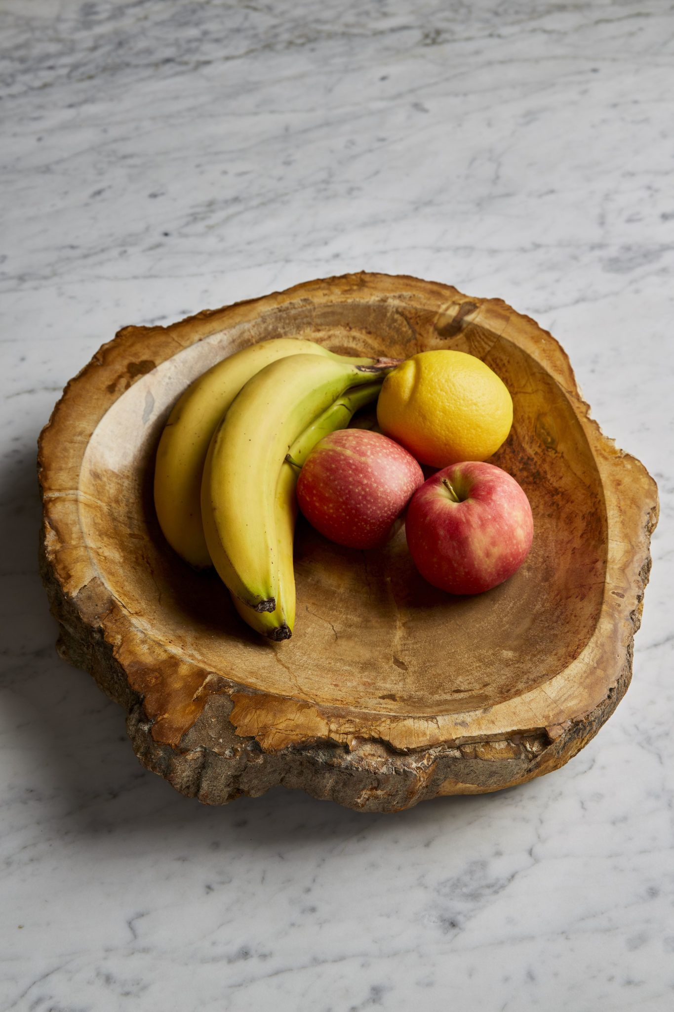 petrified-wood-fruit-dish-in-situ-1