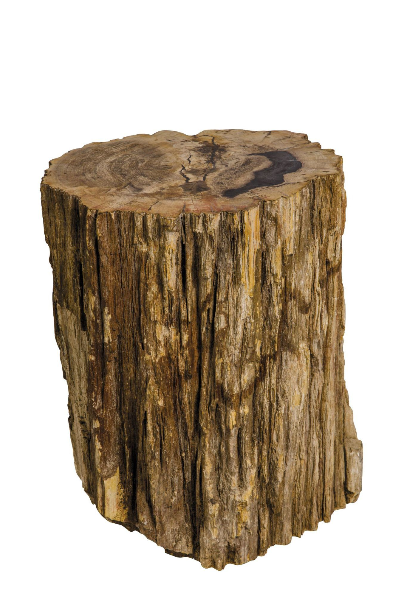 petrified-wood-stool-swatch