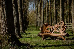 teak root bench
